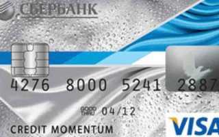 Описание кредитных карточек Сбербанка: виды, особенности