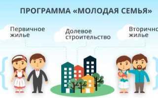Программа «Молодая семья»: условия для получения субсидии